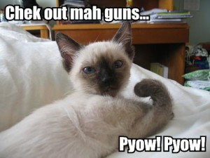 Check out mah guns, pyow pyow!