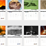 2014 Calendar of Destruction