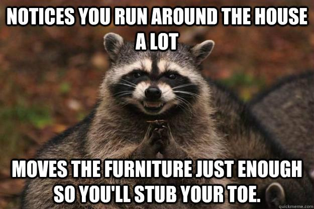 evil-furniture-raccoon