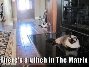 Glitch in the Matrix Cats