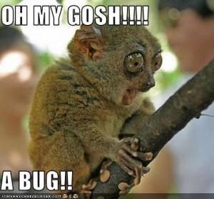 Oh My Gosh Lemur Bug
