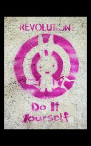 Do it Yourself Revolution