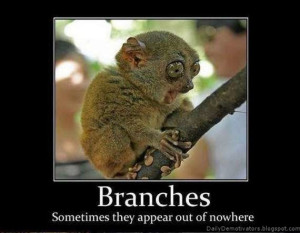 omg-where-did-those-branches-come-from-lemur