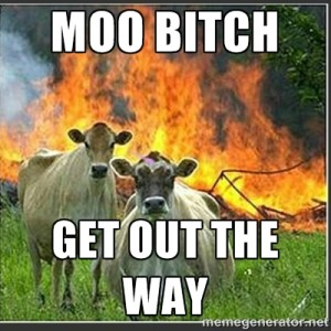 moo bitch, get out the way